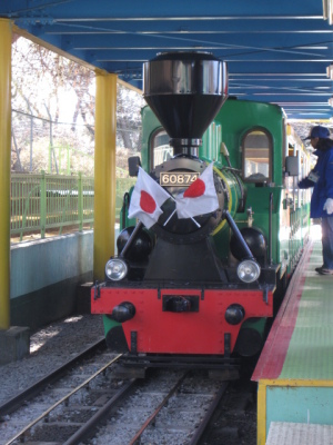 華蔵寺公園の豆汽車